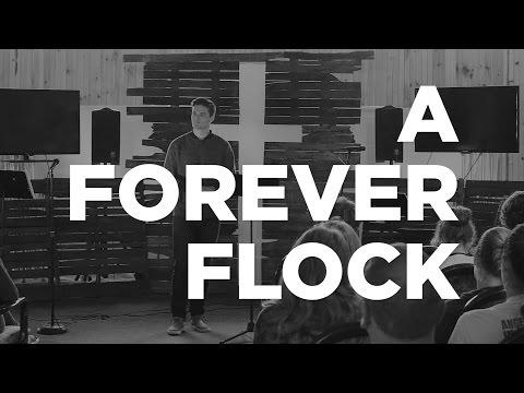 A Forever Flock | Jon Jorgenson