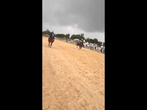 Mexican horse race in Dalton, Georgia