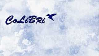 Maroon 5 - Makes Me Wonder (Colibri Remix)