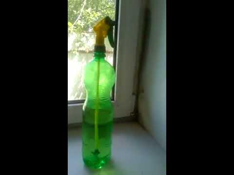 Как избавиться от плесени на окнах в домашних условиях