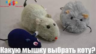 Обзор игрушек для кота  Какую мышку выбрать Вашему любимцу