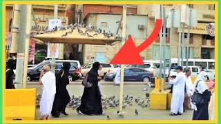 ✔ Makkah Madinah Street Life Scenes People Saudi Arabia Travel Guide Ramadan 2018