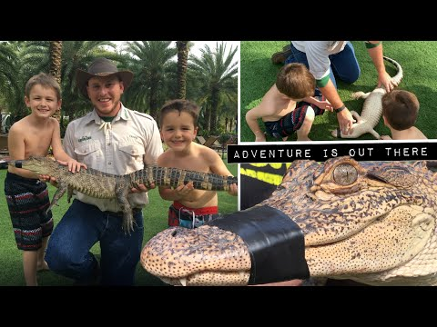 10 Alligators Facts for kids from Gatorland