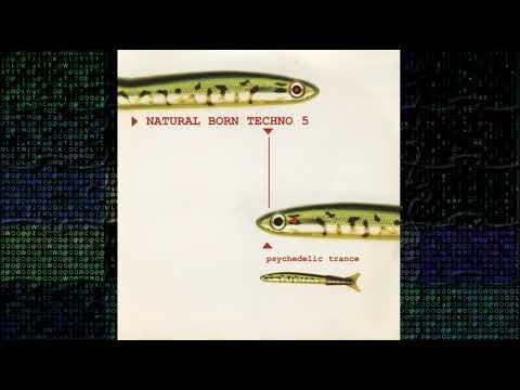Natural Born Techno 5 - 1997