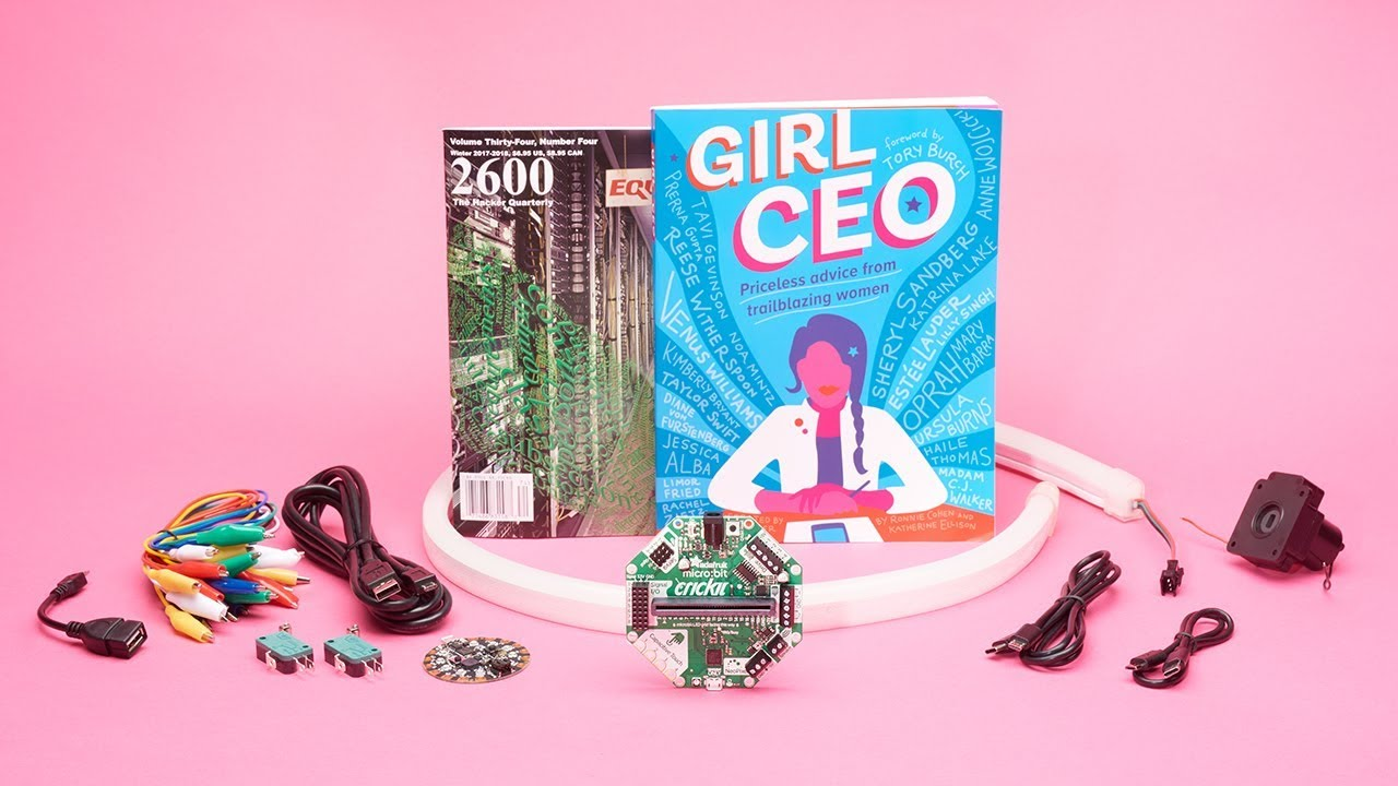 Girl CEO by Ronnie Cohen & Katherine Ellison ID: 3918 - $14 95