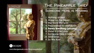 Watch Pineapple Thief Barely Breathing video