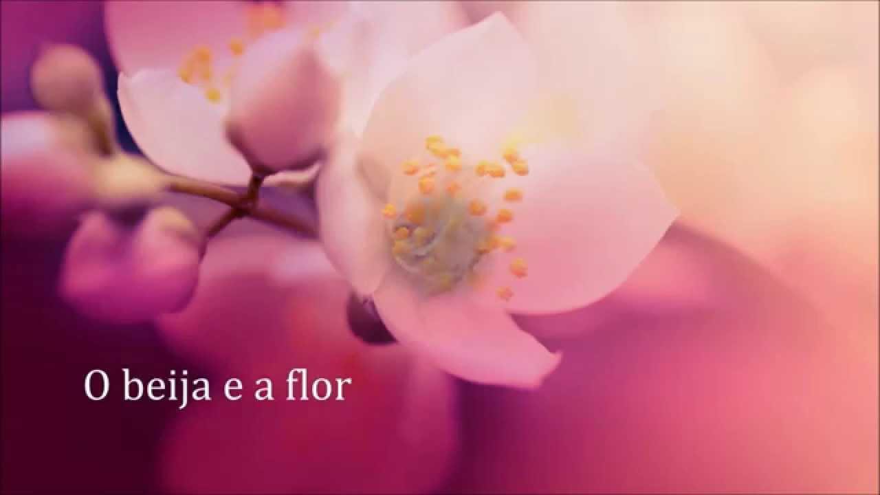 Poemas De Amor O Beija E A Flor Fernando Sales Digitalismo Versos E Frases De Amor