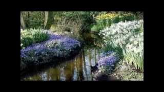 ПАРК ЦВЕТОВ КЁЙКЕНХОФ (ГОЛЛАНДИЯ)(Кёкенхоф — всемирно известный королевский парк цветов в Нидерландах. Также известен под названием Сад..., 2012-03-28T12:10:11.000Z)