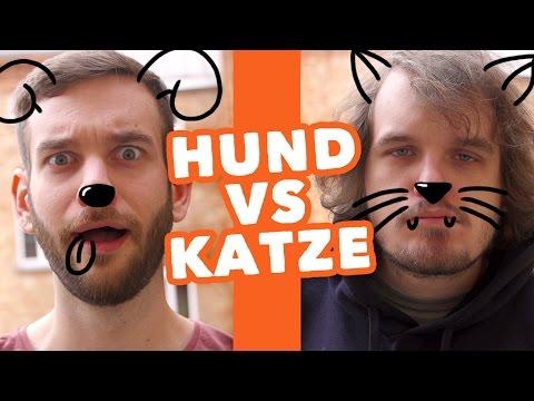 Hund VS Katze 2 - Wenn Tiere Menschen wären