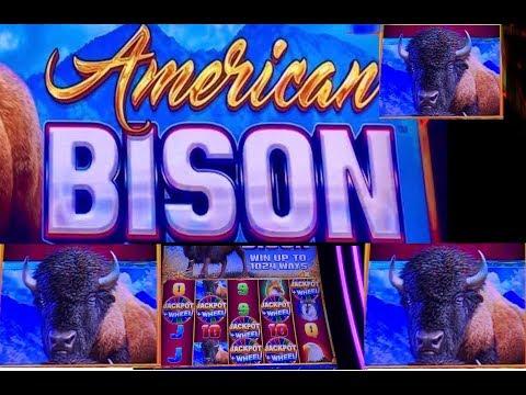 Wild Panda And American Bison Slot Bonuses At San Manuel Casino.
