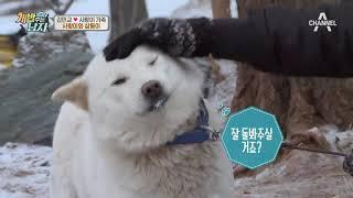 (능숙) 민교♥소영, 사랑이네 삼둥이 납치! #오늘도 #성공적