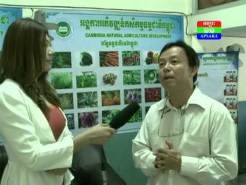 Interview Mr. Chav Pengnam (Director of Cambodia Natural Agriculture Development)