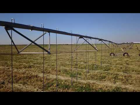 What Traceability Means at Natural Prairie Dairy Organic Farms