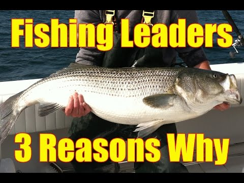 Three Reasons WHY to USE a LEADER in with Braid or Monofilament Fishing Line
