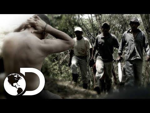 Arqueólogos viven pesadilla en monumento maya | Escape del infierno con Bear Grylls