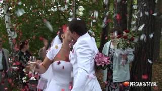 Свадебное видео. Ногинск(Свадебный видеоролик в который вошли все основные этапы свадебного дня., 2015-04-23T02:13:47.000Z)