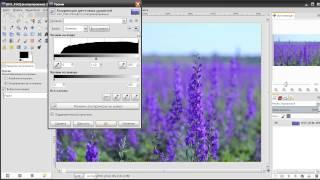 Уроки Gimp - Повышение контраста на фотоснимке