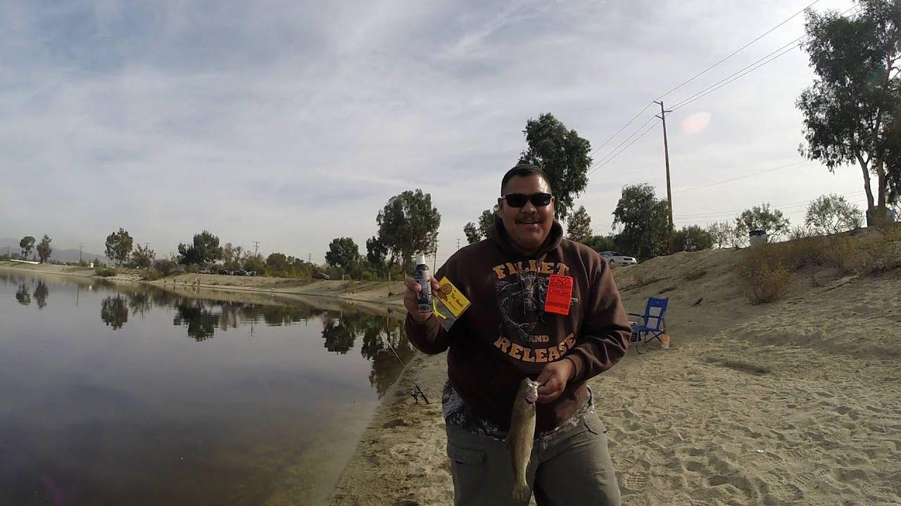 Santa ana river lakes sierra bow trout fishing for Santa ana river lakes fishing