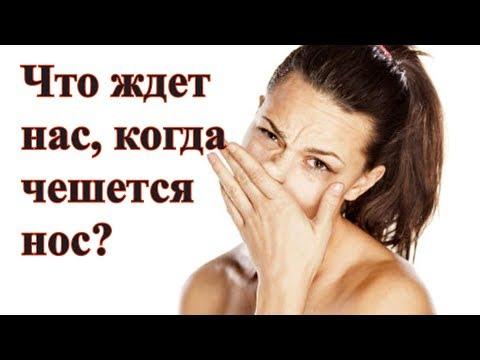 Что ждет нас, когда чешется нос?- Народные приметы