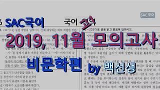 2019년 11월 고1 모의고사 비문학 해설편