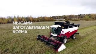 видео Натуральные фермерские продукты на дом с доставкой