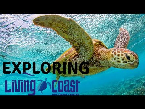 Living Coast Discovery Center in Chula Vista, California