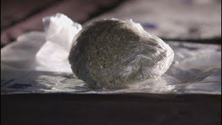 Spice mamba drugs documentary