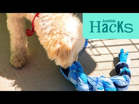 make-and-donate-a-no-sew-dog-toy-|-babble-hacks-|-babble