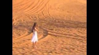 Sandstorm Darude Dubai 2010 DJ Lino.wmv