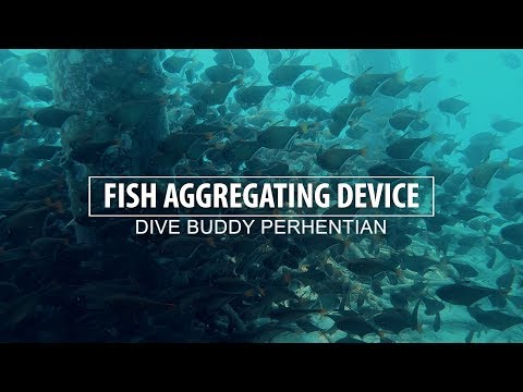 Production Of Fish Aggregating Device