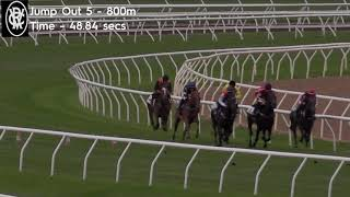 Flemington Jump Outs 26 Feb 2021 Jump Out 5