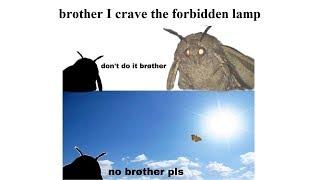 Funny Moth Memes(Moth Lamp) 2