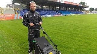 AFC Wimbledon pitch renovation