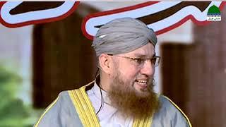 Ent Ka Jawab Pathar Say (Short Clip) Maulana Abdul Habib Attari
