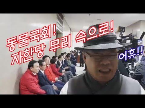 """""""동물국회"""" 자유한국당 무리 '생떼', 서울의소리 응징취재 현장"""