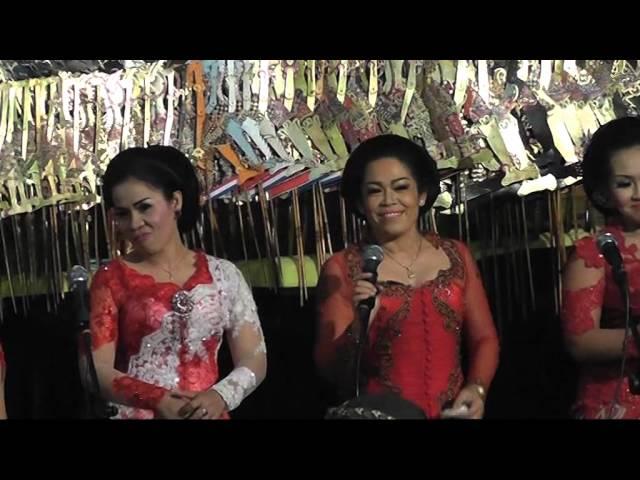 Wayang Kulit Dalang Ki Wahyu Darma - Lakon Romo Bargowo 02 2
