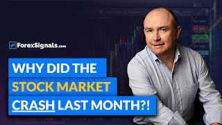 The 2018 Stock Market Crash: What caused it, and how should you invest?!
