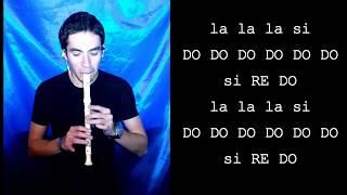 LA BICICLETA Carlos Vives & Shakira FLAUTA DULCE Cover y Notas