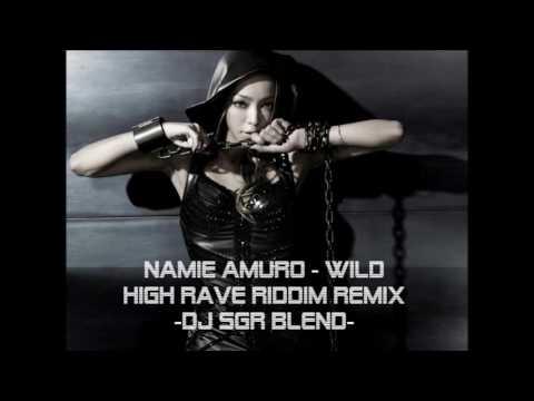 【再UP】Namie Amuro -  WILD (High Rave Riddim Remix) - DJ SGR Blend