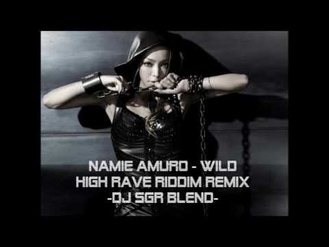 【再UP】Namie Amuro -  WILD (High Rave Riddim Remix) - DJ SGR Blend