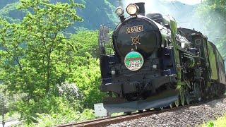 2019年 総集編 「SLぐんま よこかわ」「SL ぐんま みなかみ」蒸気機関車 D51 498 蒸気機関車 C61 20 旧型客車 12系客車