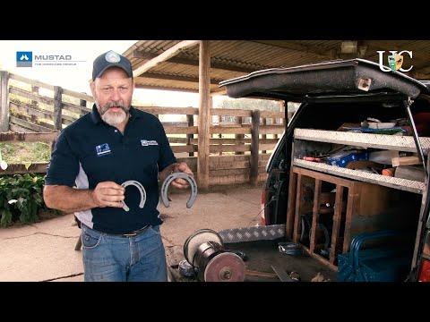 TV UC - O que você precisa saber sobre ferraduras