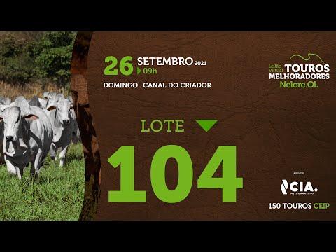 LOTE 104 - LEILÃO VIRTUAL DE TOUROS 2021 NELORE OL - CEIP