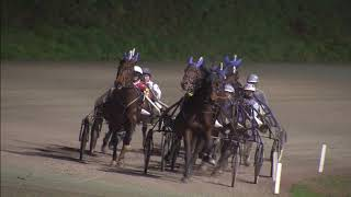 Vidéo de la course PMU PRIX DE MAASTRICHT (MERWESTAAL TALENT CHALLENGE) (INTERNET)