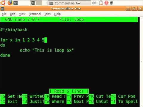 Getting Loopy with Bash: using for loops