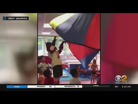 Sean Strife - NJ Devils Mascot Shatters Window at Kids Party