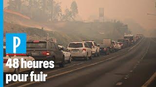 Incendies en Australie : des milliers de personnes obligées de fuir en voiture