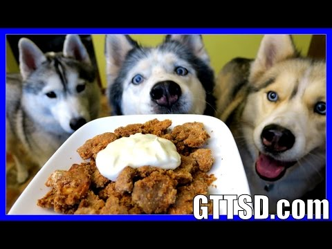 DIY APPLE CRISP FOR DOGS   How to make Homemade Dog Treats   Snacks with the Snow Dogs 37