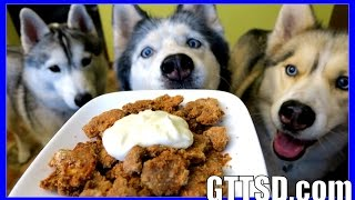 Diy Apple Crisp For Dogs | How To Make Homemade Dog Treats | Snacks With The Snow Dogs 37