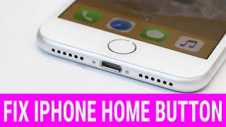 iPhone Home Button Not Working? Try This!